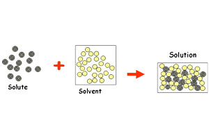The process of Solvation