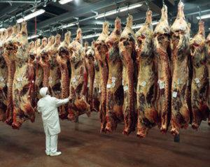 Schlachthof Agrar- und Nahrungsmittelindustrie