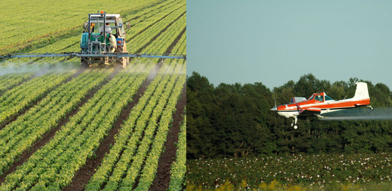 Pestizide Gefahrenstoffe Krebs